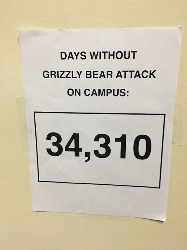 """""""Natpis koji je danas osvanuo u mojoj školi: """"Broj dana bez napada grizlija na kampusu."""""""