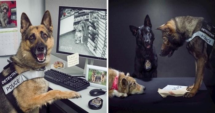 Ovaj fotograf imao je zadatak napraviti kalendar za londonsku policiju sa psima u glavnoj ulozi