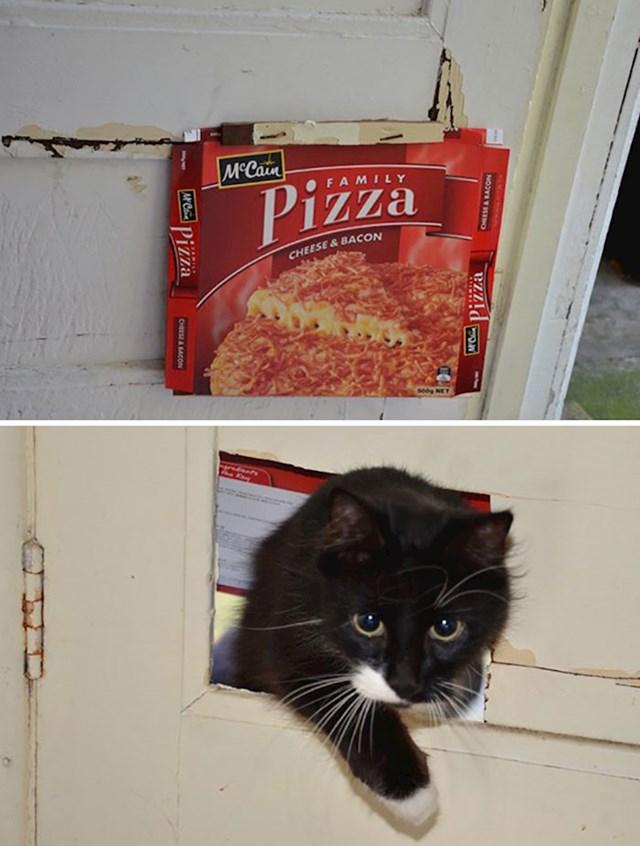 """""""Stanodavac je obećao da će nam ugraditi vrata za mačku. Došao sam kući i dočekalo me ovo."""""""