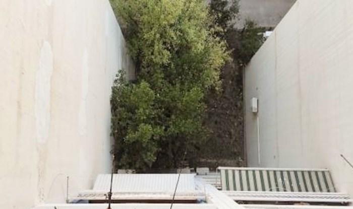Fotkao je susjede kat ispod sebe koji su se odlučili na prilično čudnu aktivnost; ovo je hit!