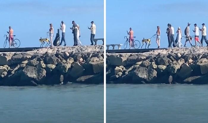 VIDEO Netko je na Floridi odlučio prošetati svog neobičnog psa