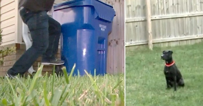 VIDEO Provalnici su htjeli ući u obiteljsku kuću ali jedan pas pokvario im je planove