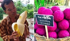15 neočekivanih stvari koje možete vidjeti samo na Tajlandu