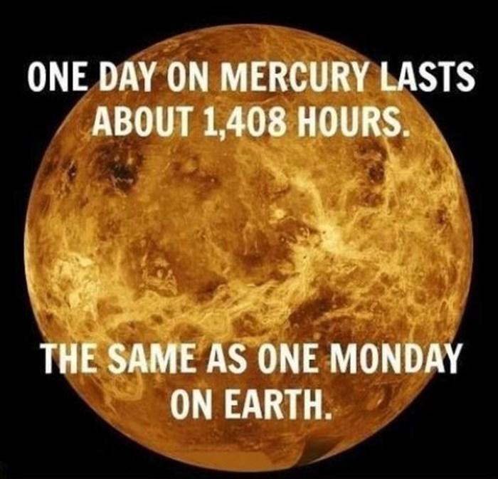 ponedjeljak je duži..