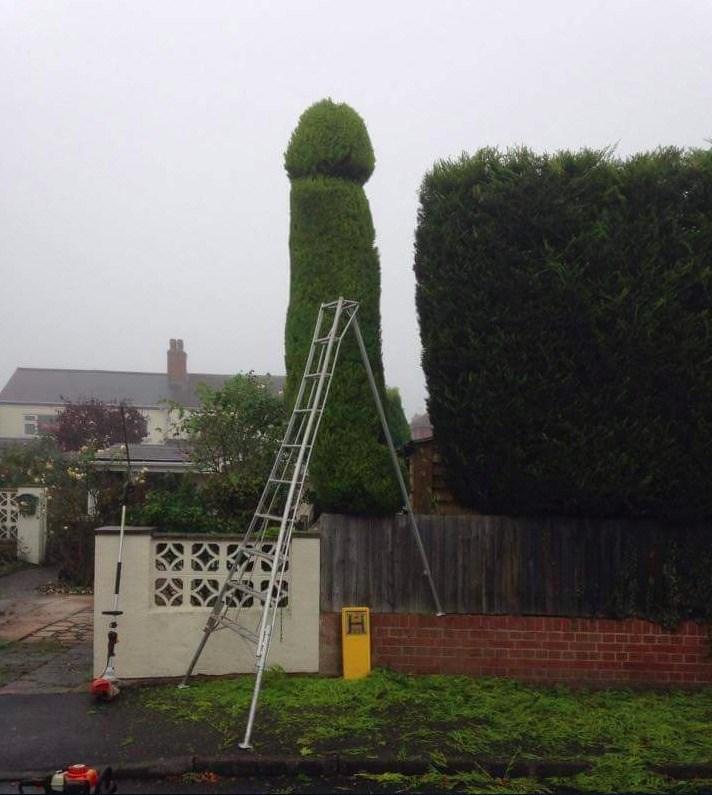 Fotografije muškaraca s velikim penisima