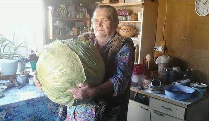Ono kada baki kažeš da ćeš pojesti samo jednu sarmu