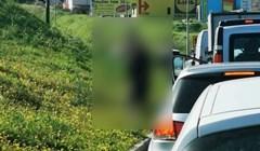 Nevjerojatno što je Splićanin napravio dok čeka zeleno na semaforu