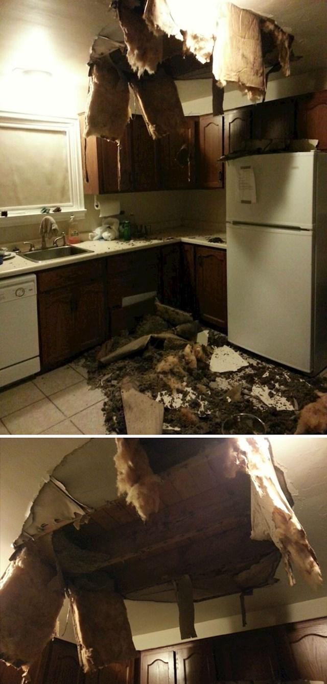 Prijavio je vlagu na stropu stanodavcu, kad se vratio s posla dočekalo ga je ovo