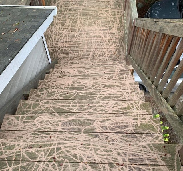 Stanodavac me zvao da je očistio trijem sa visokotlačnim peračem