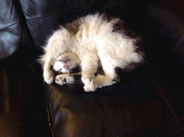 Ovako joj je najdraže spavati