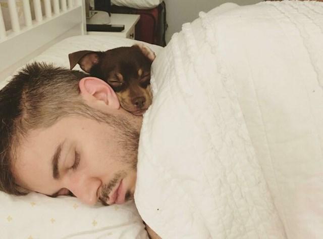 Probudila sam se i zatekla svog psa i dečka i ovako