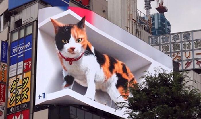 U Tokiju se upravo dogodila budućnost oglašavanja, milijuni u šoku gledaju ovaj oglas s mačkom
