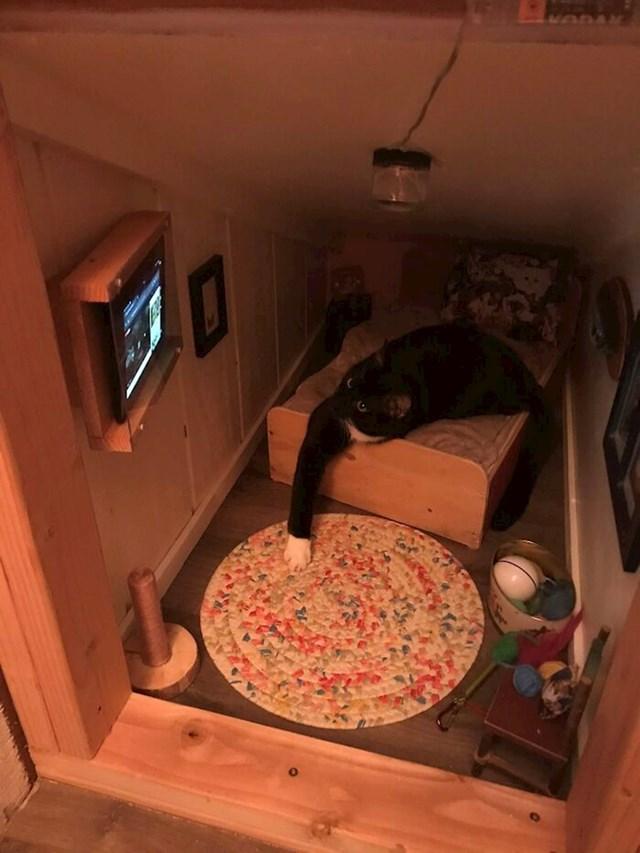 Gledanje životinja s prozora omiljena je Wyattova aktivnost, pa je 'mačji televizor' izvrsna alternativa tijekom zime