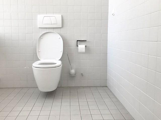 WC se ne čisti niti približno onoliko rijetko koliko sam mislio da je okej