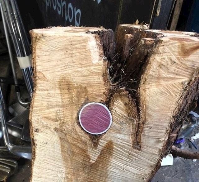 Kad sam pilao drva, pronašao sam golf lopticu usred njega