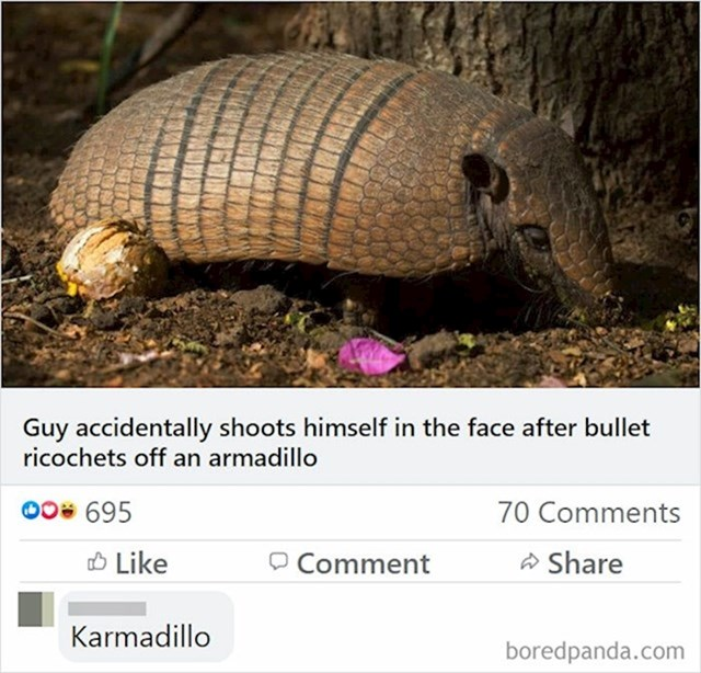 Lik je pucao u pasanca, a metak se odbio i ustrijelio ga u lice