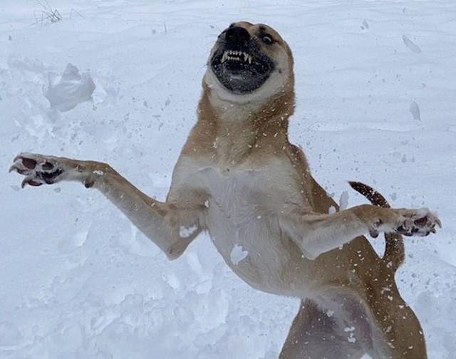 Obožava snijeg, ali kod nas ga nema često zato svo svoje veselje iskaže taj jedan put kad napokon padne