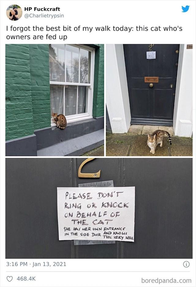 Ovi vlasnici su morali ostaviti poruku za sve dobronamjernike koji pokušavaju pomoći maci. Molim vas nemojte zvoniti u macino ime. Ona ima svoj ulaz sa stražnje strane i jako dobro to zna.