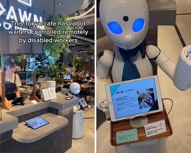 Ovim robotima upravljaju osobe s invaliditetom