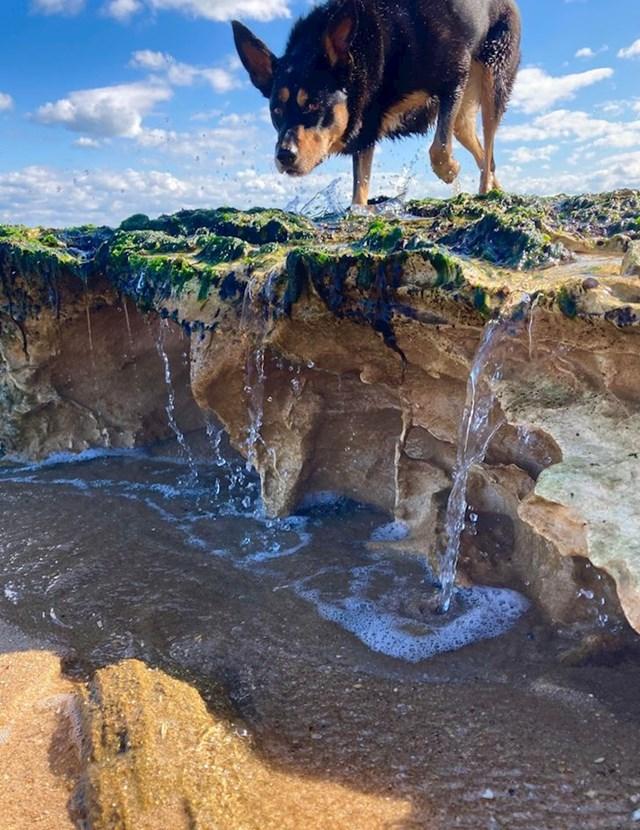 Izgleda kao ogromni pas poviše vodopada