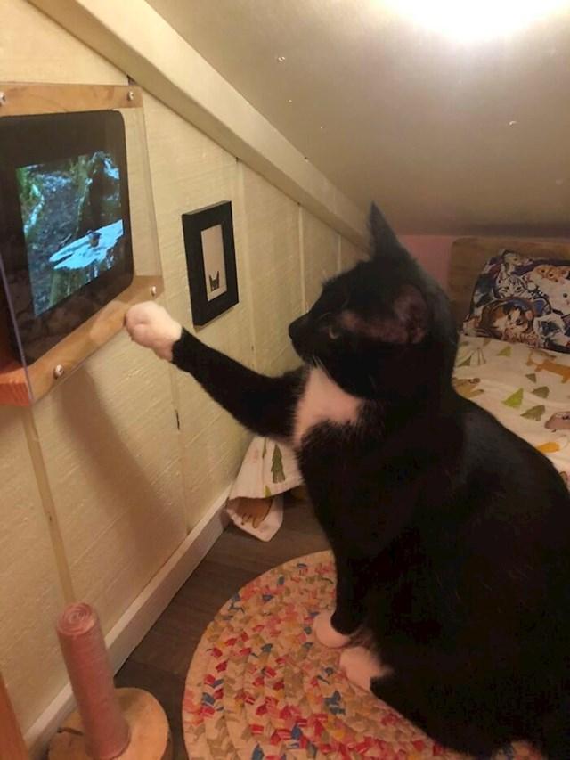 Dobio je i tablet na kojem gleda videa ptica i vjeverica