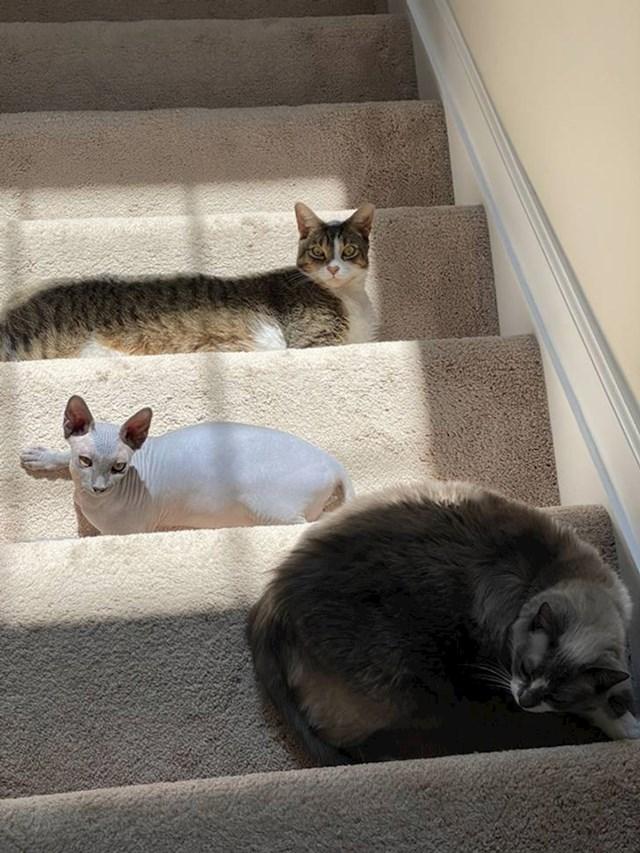 Idu li gore ili dole?