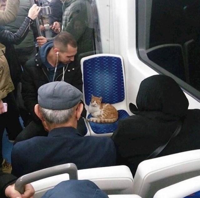 U Istanbulu je ovo uobičajen prizor u javnom prijevozu