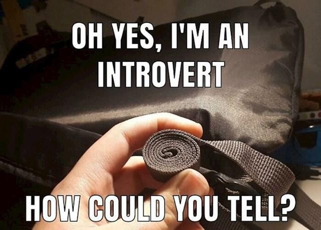 Izgleda da svi introverti rade ovu stvar