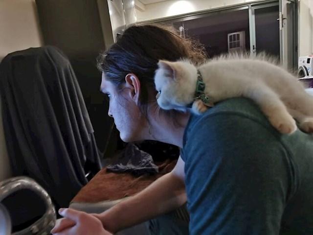 Moja maca gleda TV s mojim dečkom