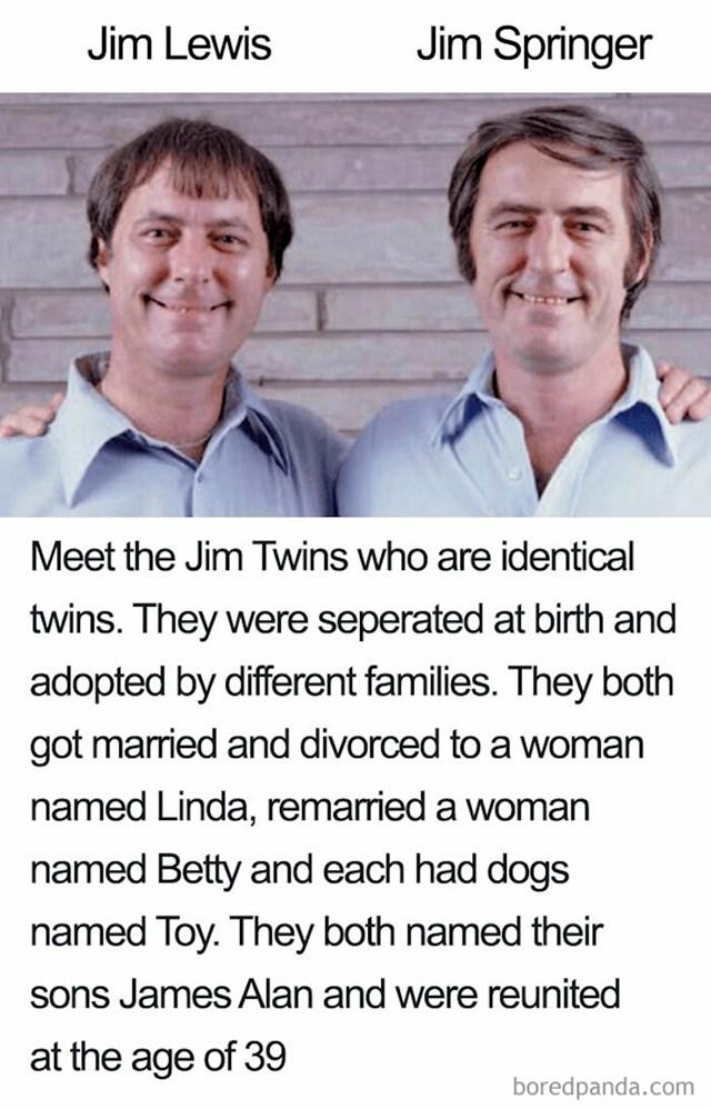 Ovo su blizanci po imenu Jim. Oni su jednojajčani blizanci koji su razdvojeni pri rođenju i posvojeni od različitih obitelji. Oba su se oženila i razvela od žene po imenu Linda pa zatim drugi put oženila za ženu po imenu Betty i oba su imala psa kojeg su nazvali Toy. Obojica imaju sina po imenu James Alan, a susreli su se s 39 godina.