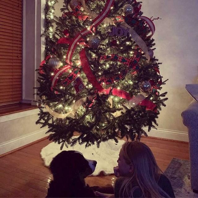 Moja cura i pas su skupa okitili bor za Božić i izgledaju jako romantično