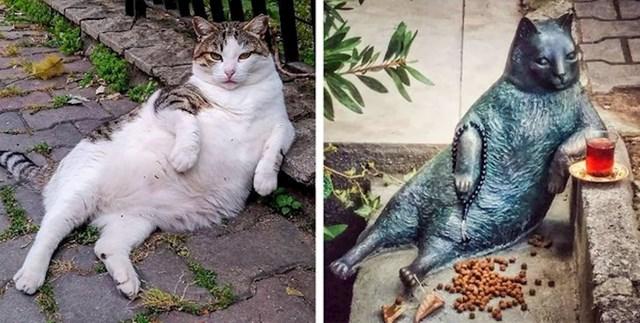 Tombili je ulična mačka koja je danima zamišljeno sjedila naslonjena šapom na pločnik. Mačka je uginula 2016. godine, a stanovnici grada postavili su spomenik u sjećanje na njega.