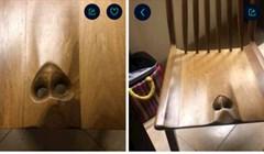 Ovo je stolica za rađanje za muškarce. I, da, služi točno tome što ste prvo pomislili
