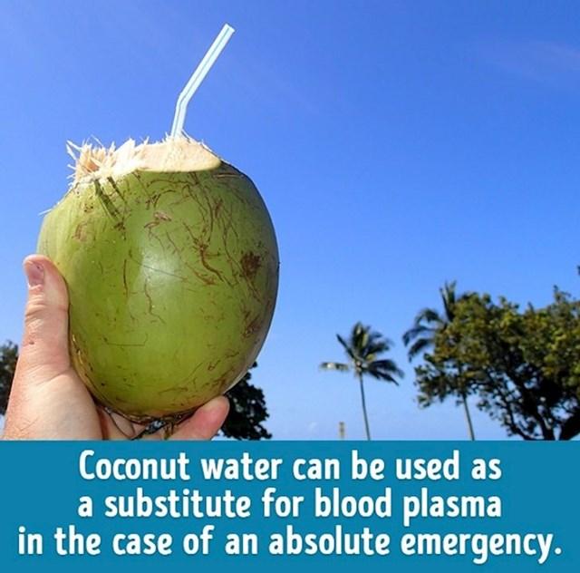Kokosova voda ima približnu strukturu kao i krvna plazma u sustavu cirkulacije. Kokosova voda se u prošlosti, u ratnim sukobima, koristila kao zamjena za krvnu plazmu. Ranjenici su dobivali kokosovu vodu za vrijeme užasnih i dugotrajnih borbi i na ovaj način su se spasili mnogi ljudski životi.