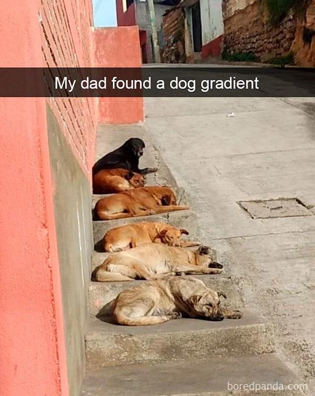 Ombre psi