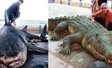 Skulpture u pijesku ovog umjetnika postale hit, izgledaju jako realno