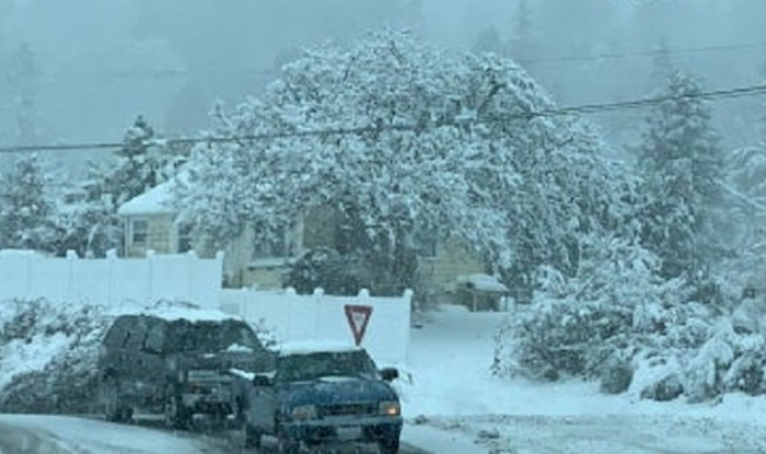 Ovom liku ni snijeg ne smeta, pogledajte kako se vozi po užasnom vremenu