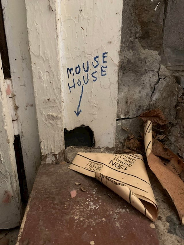 Mišja kuća! :D