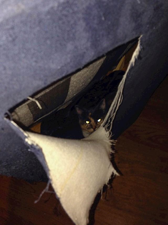 """""""Kupio sam rabljeni kauč koji se glasao..."""""""