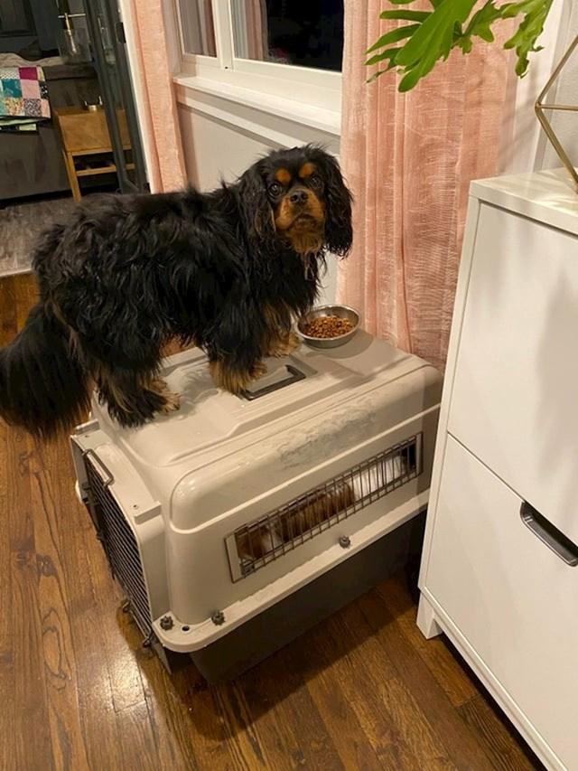Finn svoju večeru voli jesti na mjestu s pogledom