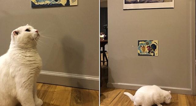 """""""Moj frend napravio je mački mini verziju umjetničke slike"""""""