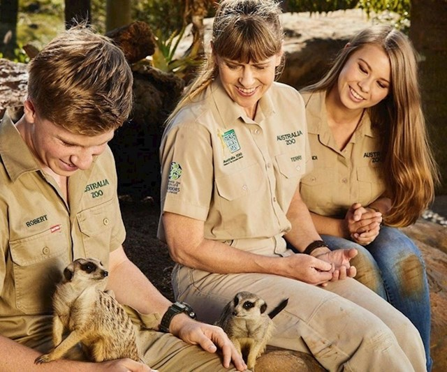 Obitelj Stevea Irwina do sada je spasila 90 000 ozlijeđenih životinja iz požara.