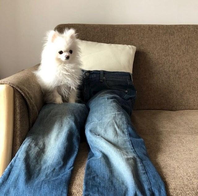 """""""Morali smo mu napraviti lažne noge da ne sjedi stalno na nama..."""""""