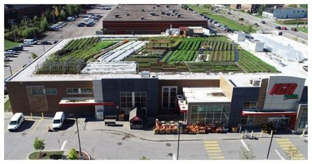 Ovaj supermarket na svom krovu ima vrt u kojem raste povrće koje prodaju u dućanu
