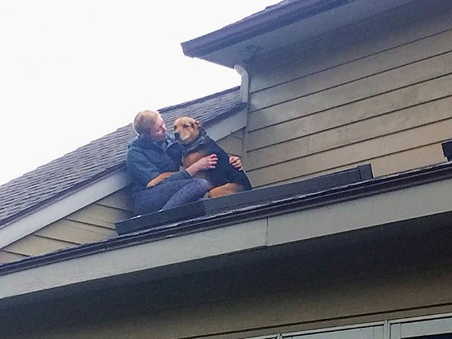 Išao je za mačkom i jako se uplašio kada je shvatio da je na krovu kuće...
