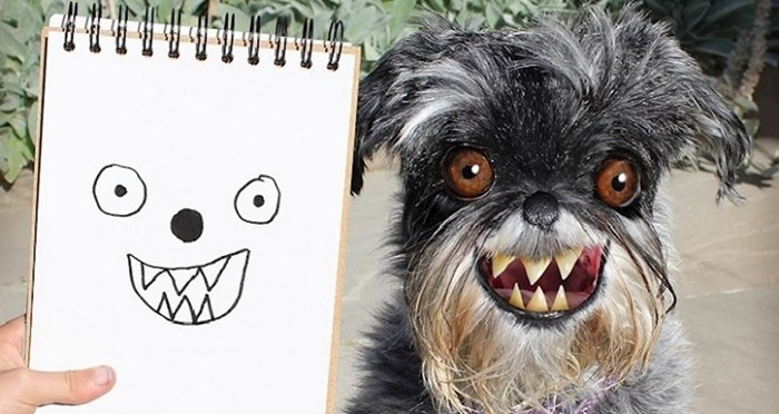Rekreira sinove crteže u photoshopu, stvarajući neobične životinje čiji bi svijet voljeli posjetiti
