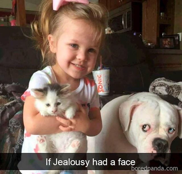 Ljubomora...