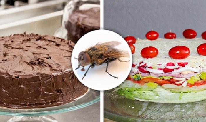 Što bi se dogodilo da svi kukci na svijetu odjednom nestanu