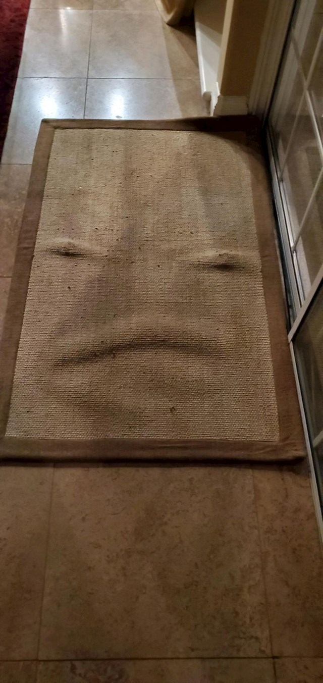 """""""Oprao sam tepih u perilici rublja i dobio je lice..."""""""