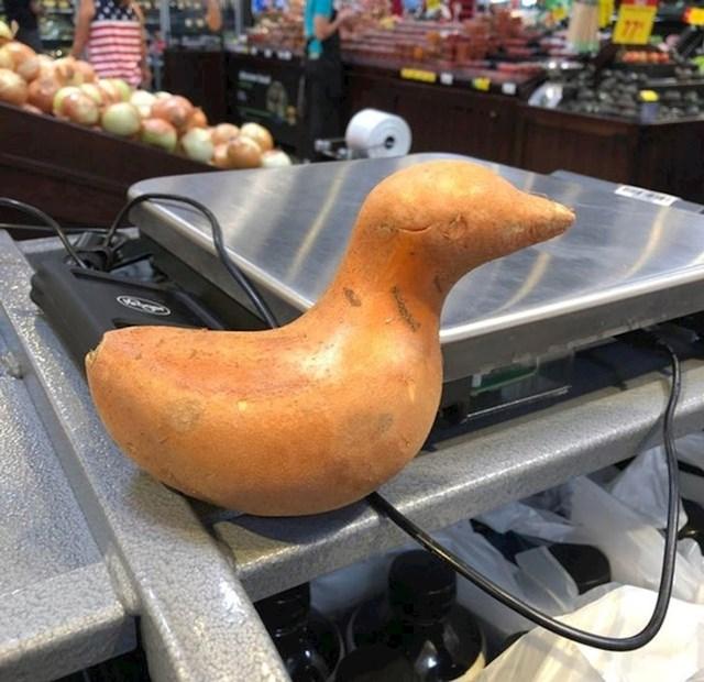 Slatka patka :)